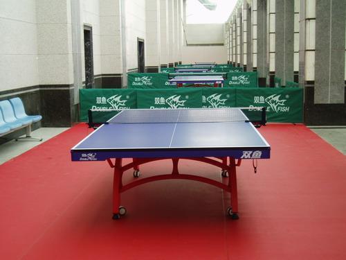 山东省地方税务局室内乒乓球